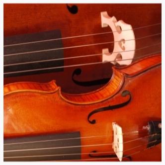 Celli und Geigen von finestrings