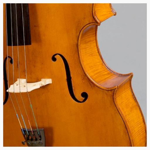 Cello von finestrings