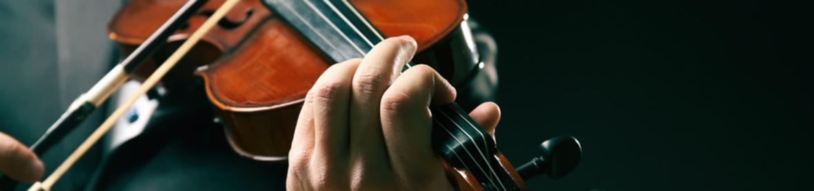 Geigenbau Axel Hain